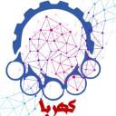 کانون همگرایی رویکردهای بین المللی امیرکبیر (کهربا)