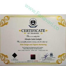 گواهینامه ارائه شده دوره pmt کشور اتریش