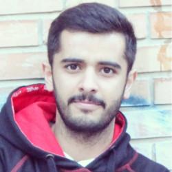 سید محمد سعید عربی