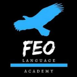 آکادمی فِئو FEO academy