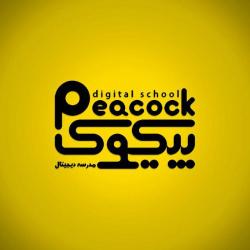 مدرسه هنرهای دیجیتال پیکوک