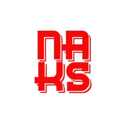 شرکت نگار آرای کیان صدر ( NAKS )