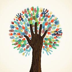 هاب کارآفرینی تبریز
