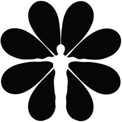 www.lifeschoolproject.com