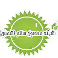 mahsolsalem92@gmail.com