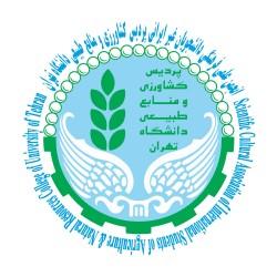 انجمن دانشجویان غیر ایرانی دانشگاه تهران