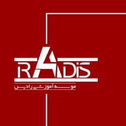 موسسه آموزشی رادیس