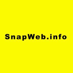 اسنپ وب  -  مرکز راه اندازی و توسعه کسب و کارهای اینترنتی